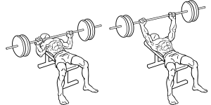 borstspieren trainen - bench press