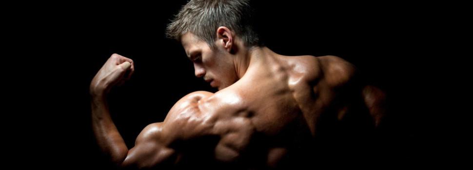 Armspieren trainen – de 6 beste oefeningen